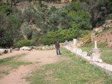 Delphi258_Gymnasium