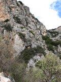 Delphi564_Stade