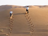 AlAin049_Desert