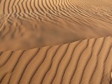AlAin058_Desert