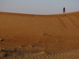 AlAin073_Desert