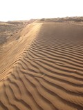 AlAin083_Desert
