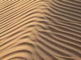 AlAin091_Desert