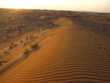 AlAin209_Desert