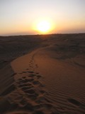 AlAin229_Desert