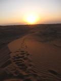 AlAin229_Desert