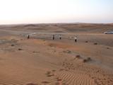 AlAin230_Desert