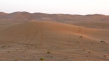 AlAin236_Desert