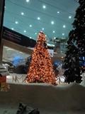 Dubai391_Ski