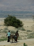 Israel2474_Galilee_Jericho