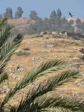 Israel2949_Galilee_Tiberias