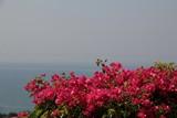 Israel3062_Galilee_MountOfBeatitudes