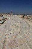 Israel3325_Galilee_Sepphoris