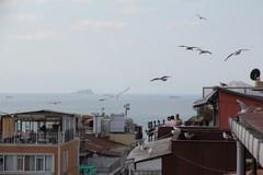 Turkey1930_Istanbul_HotelRast