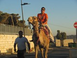 Jerusalem499_MountOfOlives