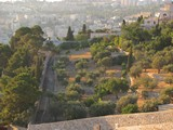 Jerusalem522_MountOfOlives