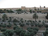 Jerusalem530_MountOfOlives