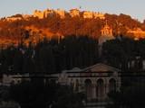 Jerusalem557_MountOfOlives