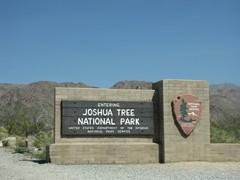 Joshua153_SouthRoad