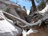 TentRocks317_BackThruCanyon