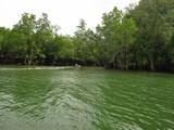 PhangNga039_Canals