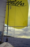 It's the Spinaker sail!
