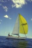 Admiring the Spinaker sail (1)