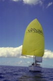 Admiring the Spinaker sail (2)