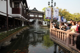 Shanghai884_FishPond