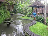 Ubud0426_Pertiwi_Blessings