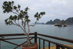Vietnam5042_HaLong_KissingRocks