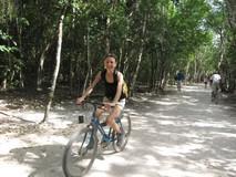 Y5591_Coba_Bikes