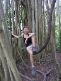 Y5829_Coba_Jungle