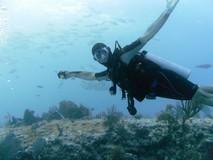 Y6295_RivieraMaya_ReefDive2