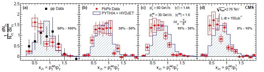 MIT Relativistic Heavy Ion Group
