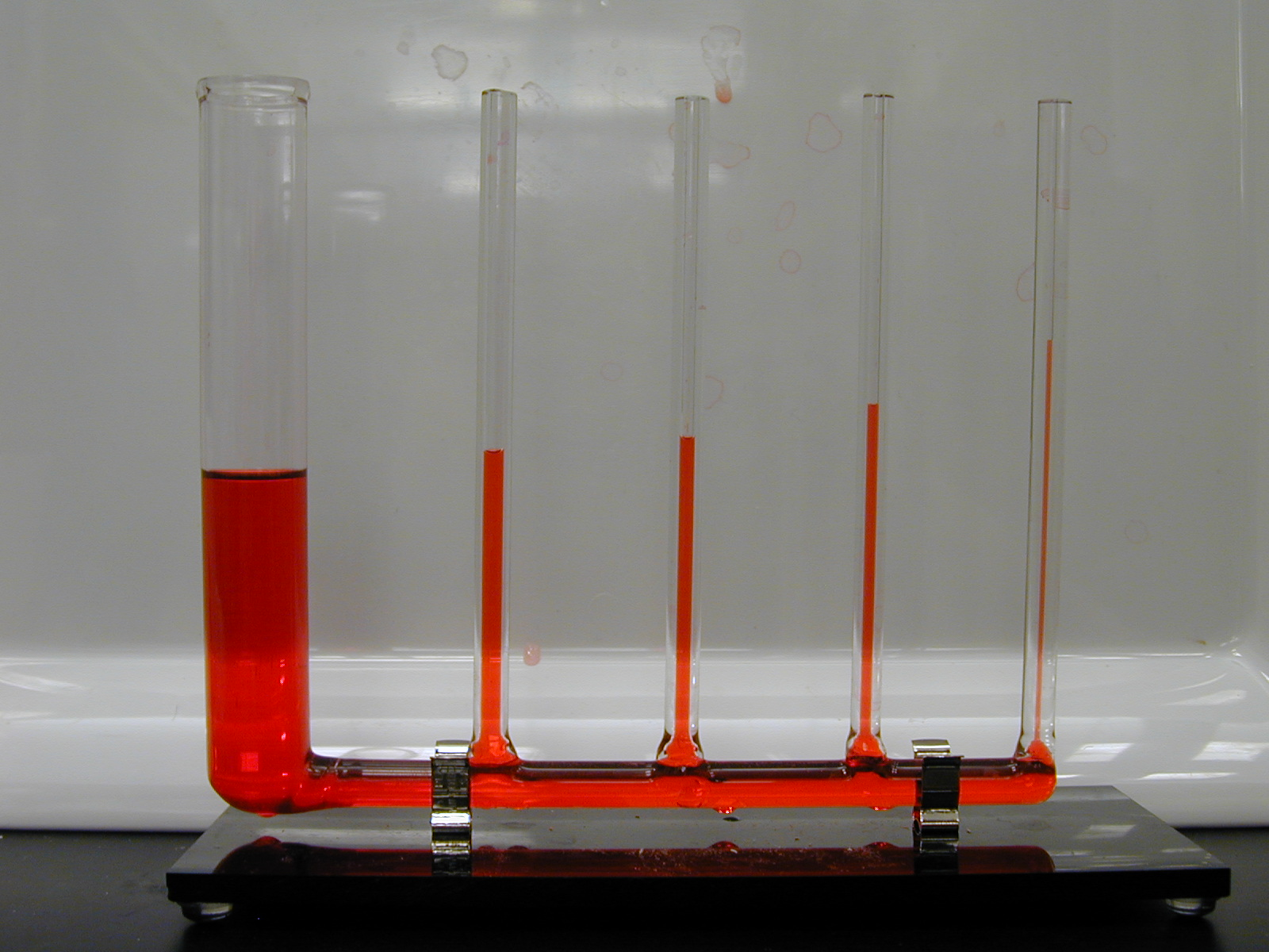 describe the relationship between tube diameter and capillary action