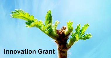 innovation centre innovation grant