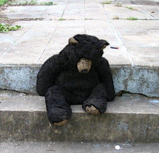 Ebay Large Stuffed Bear Haunted Demonic Presence Item